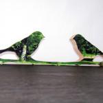 pbird13